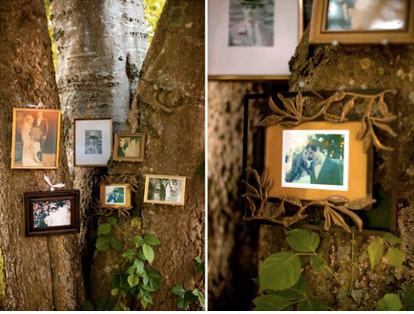 This outdoor wedding showed a real family tree Family pics framed in